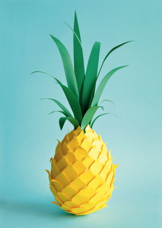 lonneke leever ananas