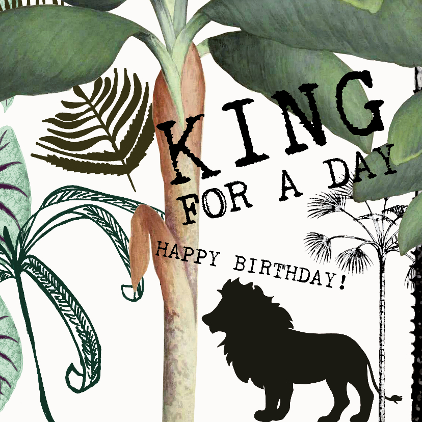 king for a day verjaardagskaart studio onszelf